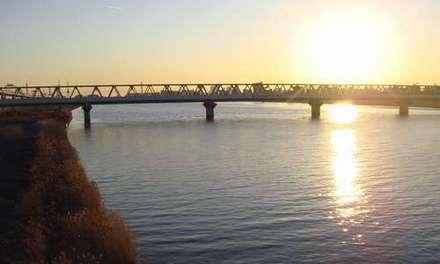 荒川太陽.jpg